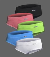 Detail 5 pcs of panties in different colour